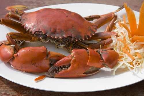 Plastry ułóż na talerzykach, a potem rozłóż na nich schłodzone mięso z kraba. Wszystko posyp ziarnami z sezamu.